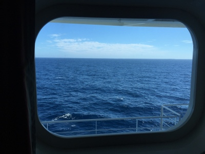 E532 Ocean View Obstructed on the Ruby Princess Can you see the obstruction?